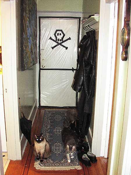 Toxic Kitties